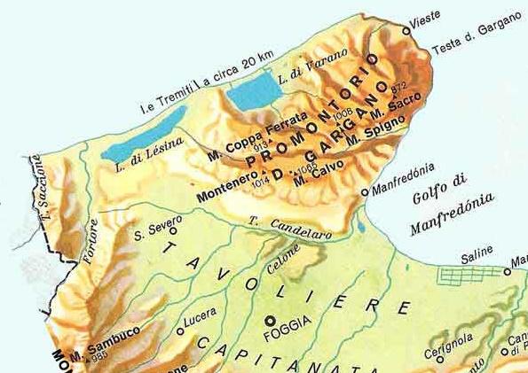Cartina Puglia Zona Gargano.Come Arrivare A Vieste Collegamenti Ferroviari In Autobus O In Aereo