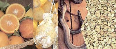 Prodotti del Gargano  di Presidi Slow Food