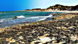 Spiagge di Torre Guaceto a Carovigno